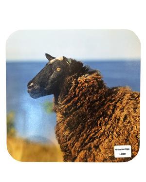 Grytunderlägg Lamm 12st/fp Pris: 19,50.-/st
